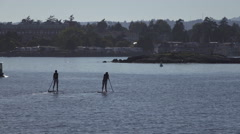 Paddle Boarders and Water Taxi in Victoria, Canada Stock Footage