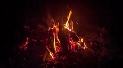 Campfire in the night Stock Footage