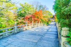 Autum season in japan Stock Photos