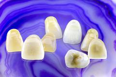 Stock Photo of Eight ceramic dentures