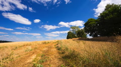 Beautiful stubble field under blue sky. Stock Footage