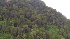 Thai jungle hill aerial video - stock footage
