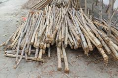 Lumber pile at construction site Stock Photos
