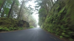 TIME LAPSE P.O.V. - Drivers View on foggy road Stock Footage