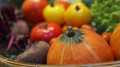 Fresh Vegetables, five colourful vitamin and healthy food Stock Footage