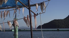 Outdoor Fish Drying in Japan Stock Footage