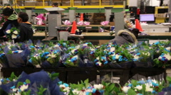Bouquet Flower Manufacturer Stock Footage