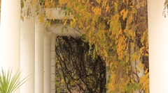 Walkway with pillars in the park Stock Footage