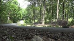 Yellow rally car accelerating while climbing on downhill slope through the gr - stock footage