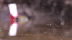Insects flying above a stagnant puddles  94 - stock footage