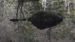 Reflection in Pond at Kamikochi, Japan Stock Footage