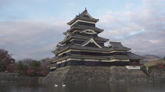 Swans at Matsumoto Castle Japan Stock Footage
