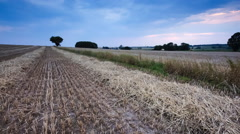 Stubble field at sunset. Beautiful rural landscape Stock Footage