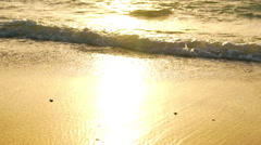 Amazing Sunset Over Tropical Beach SLOW MOTION - stock footage