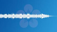 Rainforest (45 sec. clip) - stock music