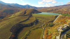AERIAL VIEW. Hilly Terrain With Grape Fields Stock Footage