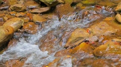 Small Stream Flowing Down Among Stones Stock Footage