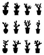 silhouettes of cactus - stock illustration