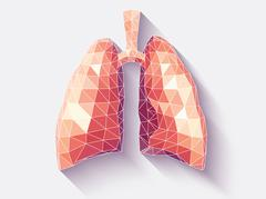 Lungs faceted Stock Illustration