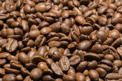 roasted Arabica coffee beans - stock photo
