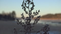 View on the fish farm in winter. Stock Footage