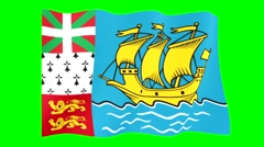 Flag of Saint Pierre and Miquelon. Waving (PNG) computer animatie. Stock Footage