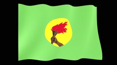 Flag of Zaire.  Waving flag (PNG) computer animatie. Stock Footage
