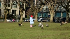 Little girl feeding birds in park Stock Footage