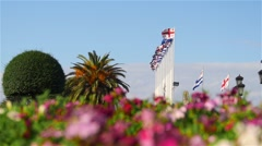 Georgian flags with palm tree and flowers Stock Footage