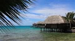 Ocean bungalo with palm tree Stock Footage