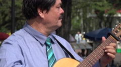 Guitarist at Park with Pigeons Stock Footage