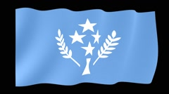Flag of Kosrae.  Waving flag (PNG) computer animatie. - stock footage