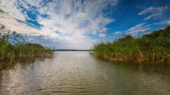 Timelapse of lake shore with green reeds under blue sky with clouds. - stock footage