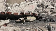 Tilt: A mannequin represents dead person injured from earthquake - stock footage