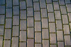 Brick paver stones on a pathway Stock Photos
