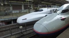 Shinkansen Trains at Tokyo Station - stock footage