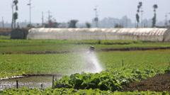 Farmer irrigating farmland Stock Footage