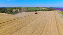 AERIAL: Farmer harvesting agricultural wheat field with combine machinery Stock Footage