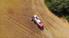 AERIAL: Farmer cutting crop with combine on yellow wheat field Stock Footage