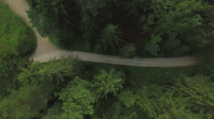 AERIAL: Empty dirt road leading through lush green forest Stock Footage