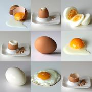 Set of nine eggs in various situation - sliced, boiled, fried, coocked Stock Photos