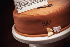 Cake In Shape of Piano and Cello - stock photo