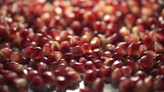 Backlit falling pomegranate seeds close up Stock Footage