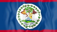 Animated flag of Belize Stock Footage