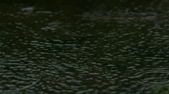 Raindrops Landing in Puddle of Water in Slow Motion 2 Stock Footage