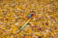 Umbrella on fallen leaves - stock photo