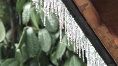Ice Storm Melting Stock Footage