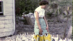 Woman Feeding Chickens Poultry Poultry Farm 1950s Vintage Film Home Movie 9203 Stock Footage