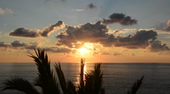 Sunset over the ocean with a palm tree, timelapse Stock Footage