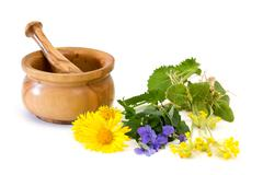 Medicinal plants with mortar and pestle Stock Photos